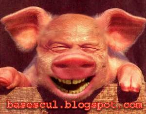 porcul basescu_